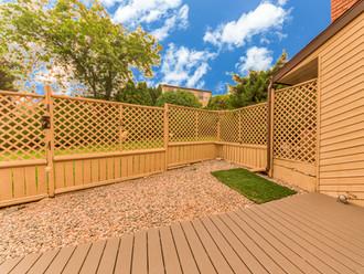 Fenced back yard