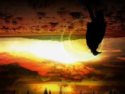 Last Whybirds gig // Herd Behaviour single