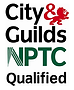 Qualified tree surgeon Monmouthshire
