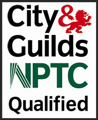 Fully qualified tree surgeon Monmouth