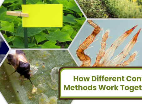 How Different Control Methods Work Together