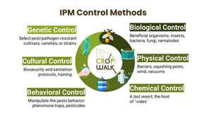 """What are the Different Kinds of """"Controls"""" Used in IPM?"""