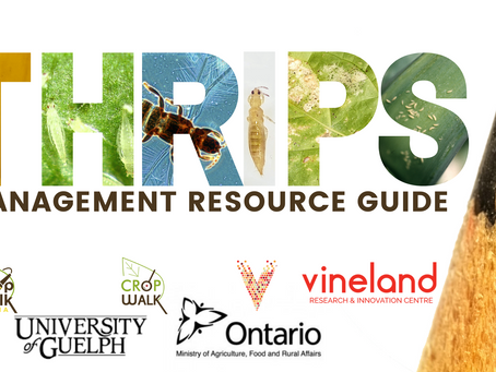 Thrips Management Resource Guide