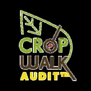 cropwalk_audit-removebg-preview.png