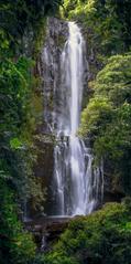 """""""Wialua Falls"""""""