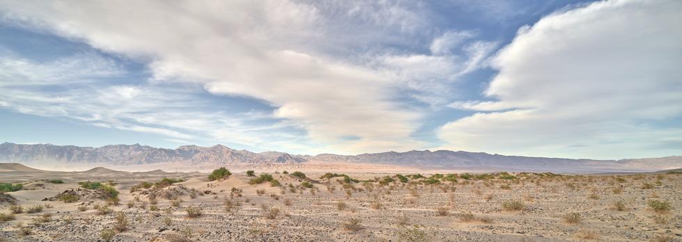 """""""Mesquite Dunes"""""""