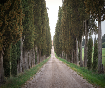 """Follow the Road"""