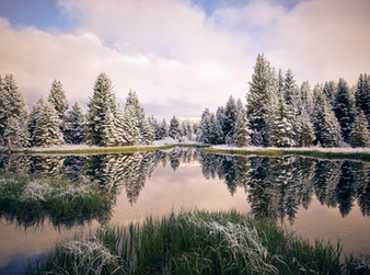 """Spring Snow at Schwabacher"""