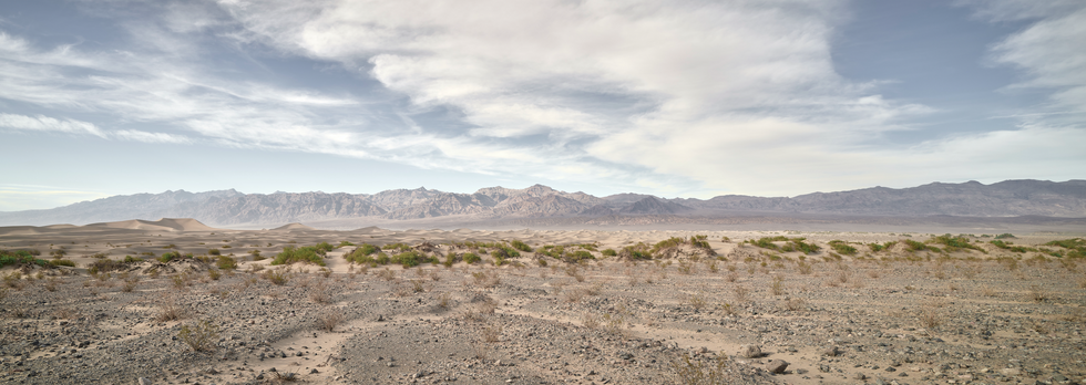 """""""Mesquite Dunes II"""""""