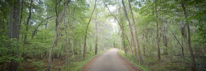 """""""Caddo Road"""""""