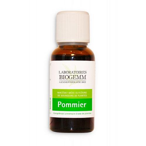 Pommier - 30ml