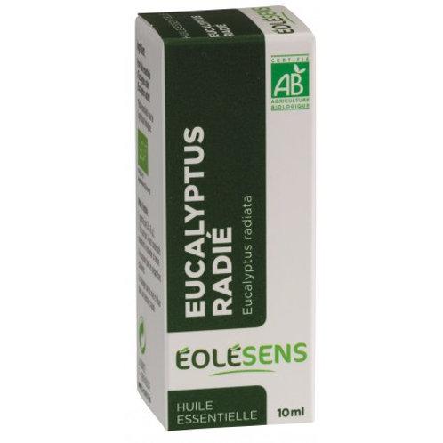 Huile essentielle d'Eucalyptus Radié - 10ml
