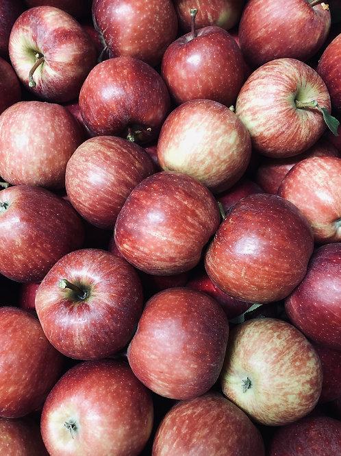 Pomme ''Gala'' - 500g - Cavaillon