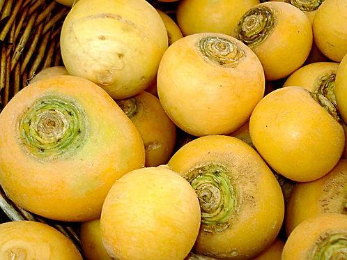 Navet jaune ''boule d'or'' - 500g - France