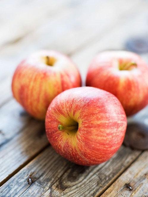 Pomme ''Reinette'' - 500g - Arles
