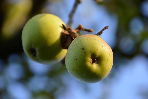 Pomme ''Jaune'' - 500g - Cavaillon