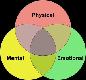 Mental Emotional Physical Image.png