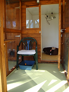 Christchurch Cattery