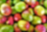 fruit-3298948_1920.jpg