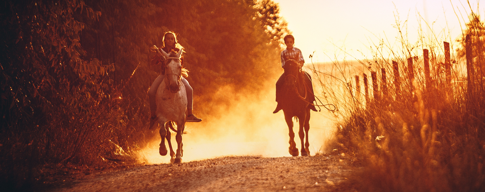 Riding Lessons Header.png