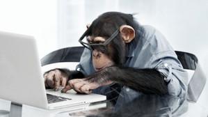 Etablir son bilan, une obligation vertueuse pour tout chef d'entreprise