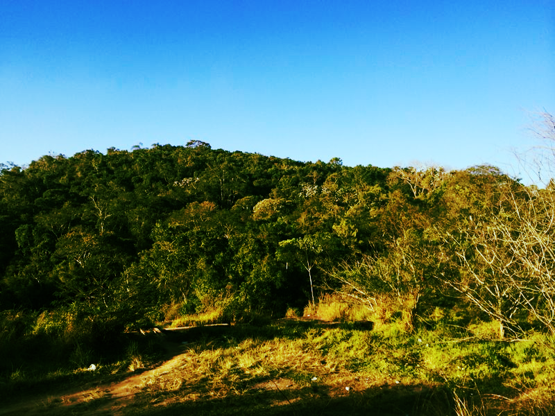Parque nacional de Isla Grande