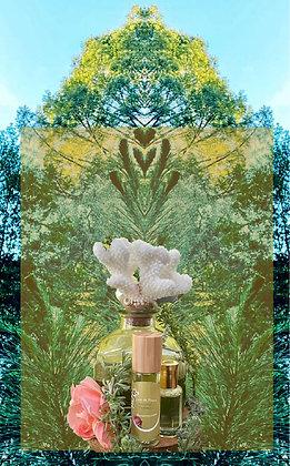 Resurrection - Live in Peace Botanical Perfume