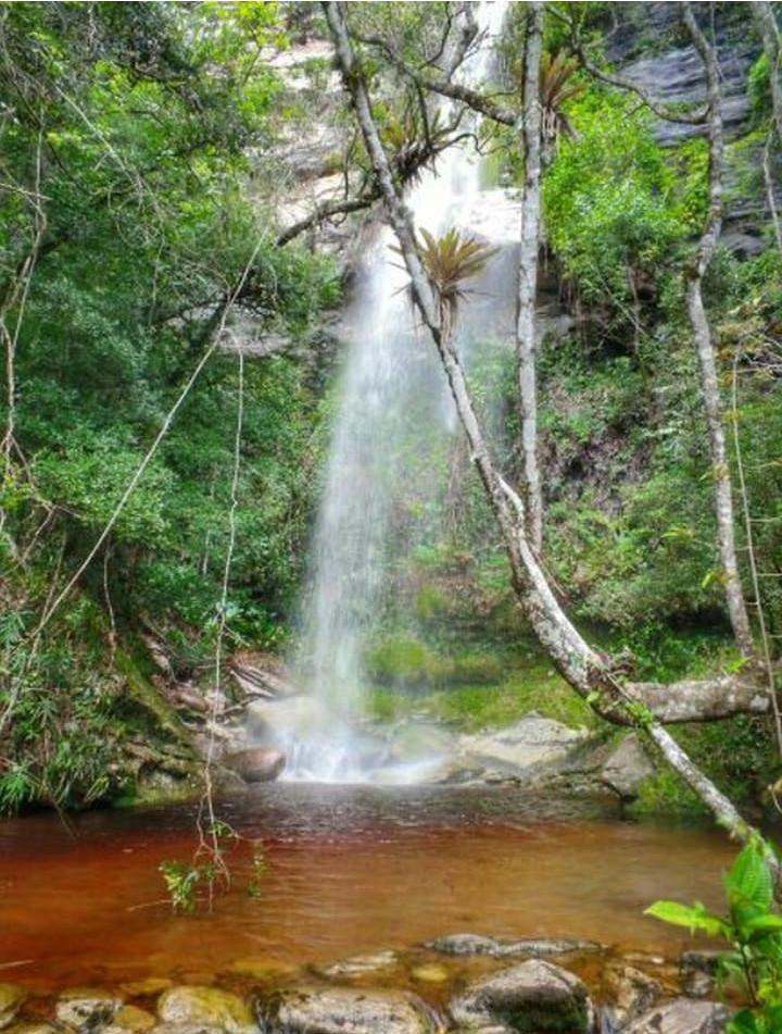 Cachoeira da Agua Amarela