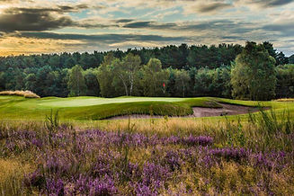 sherwood forest 7th green.jpg