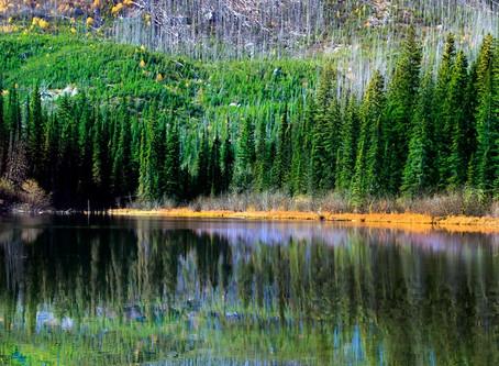 Rockies' Splendor