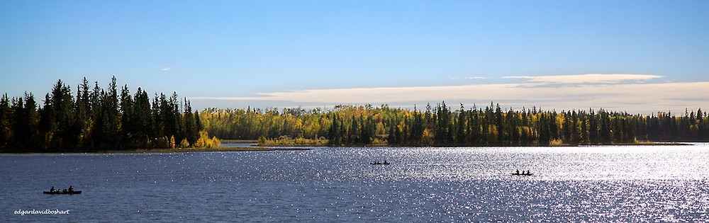 Voyageurs hunted and trapped Canada's western grasslands