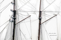 Before the Mast