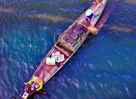 "Vietnam Redo: The Way to Hue (""way"")"