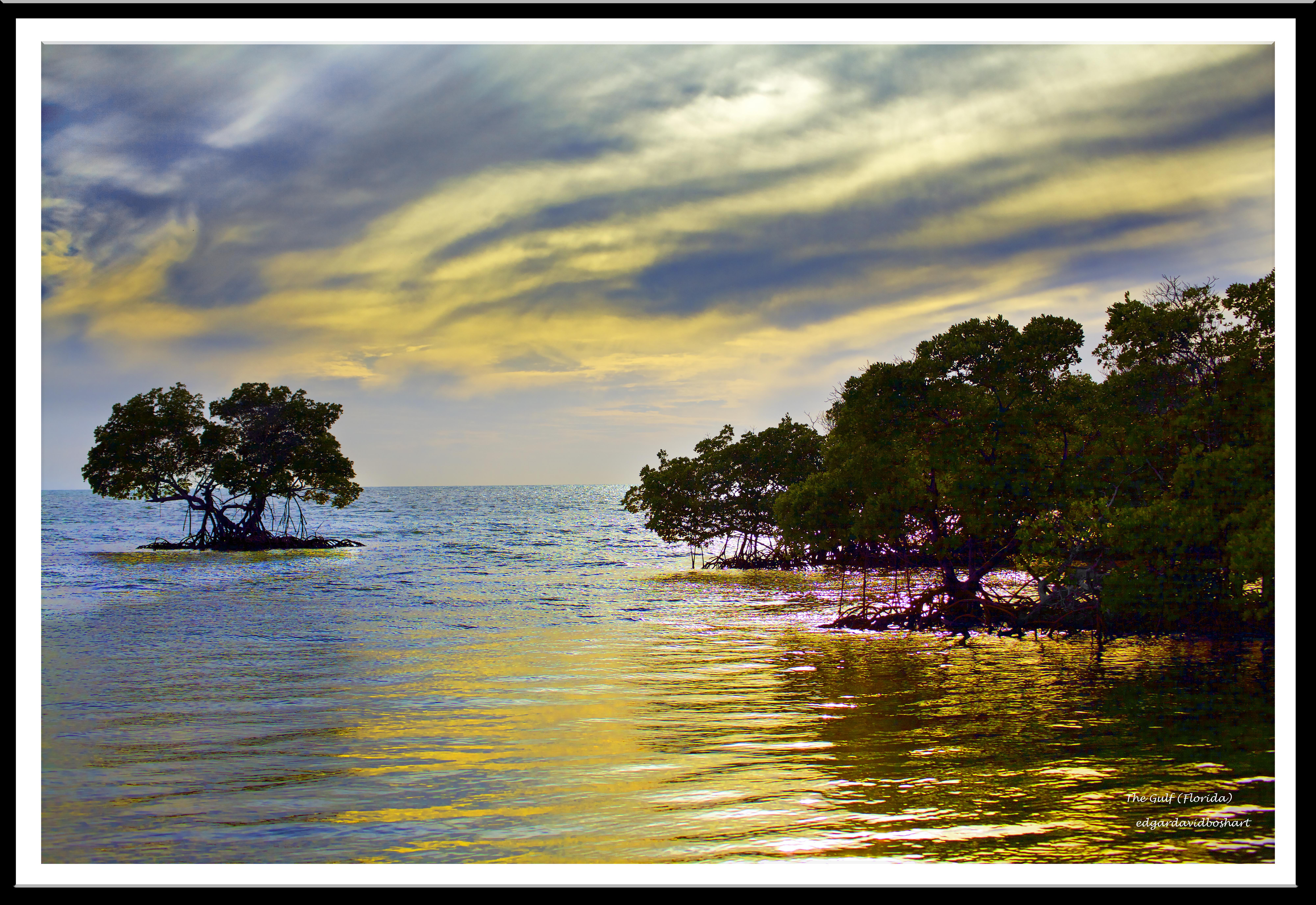 The Gulf, Florida