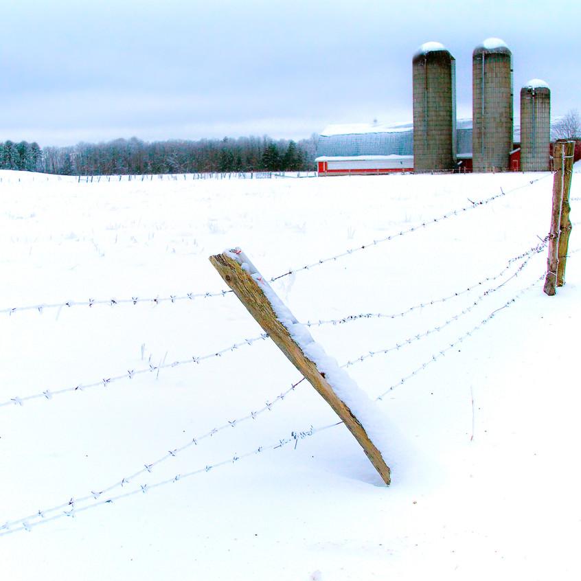 017blog videoCroghan Winter