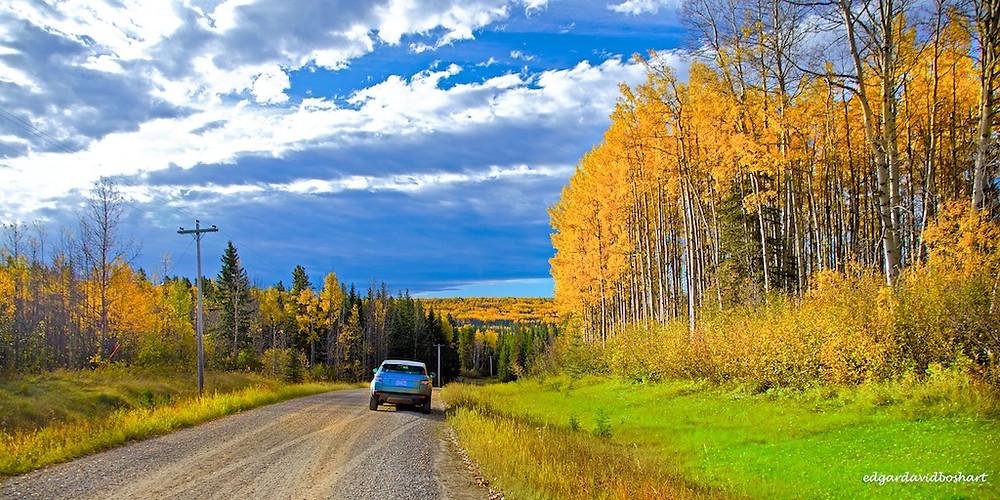 Aspen Lane, Alberta