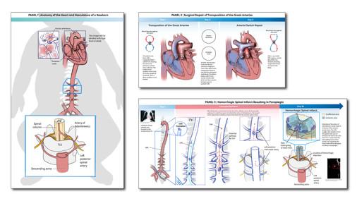 MLV_PanelLayout_v3-01 copy.jpg
