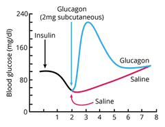 07.4_BCHM 270_Blood Glucose Graph.png