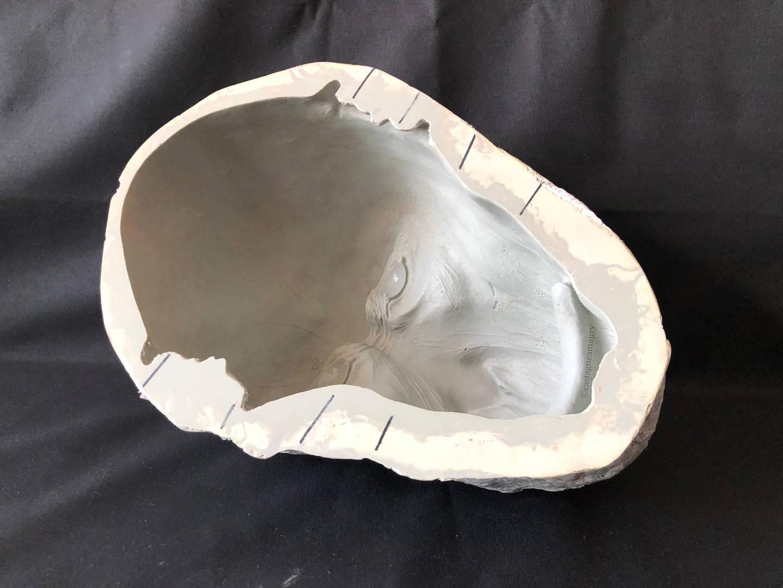 resin-fibregass-mould-castagne-amaury-2.