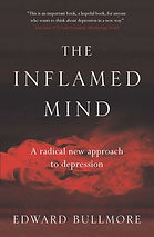 the-inflamed-mind-9781925791044_lg.jpg
