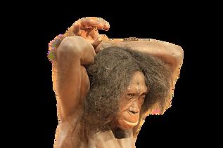 neanderthal-4731929_1920%20Image%20by%20