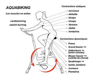 muscle et bike.jpg