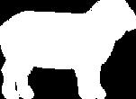 lamb-silhouette.png