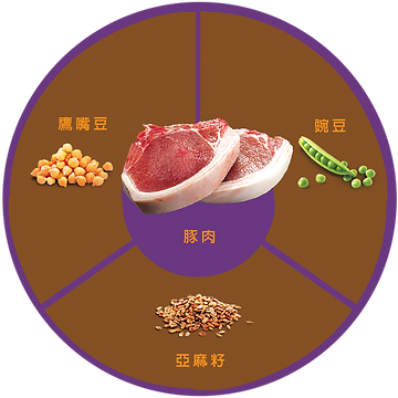 [www.zignature.com]_cdd9_QUADRANTS_PORK_