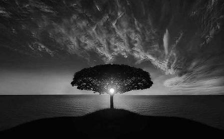black-white2.jpg