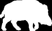 boar-silhouette.png