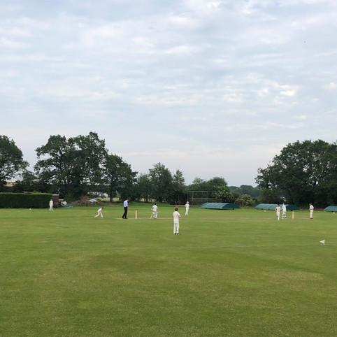 junior cricket wicket 2.jpg