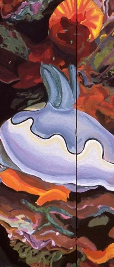 nudibranch-screen.jpg
