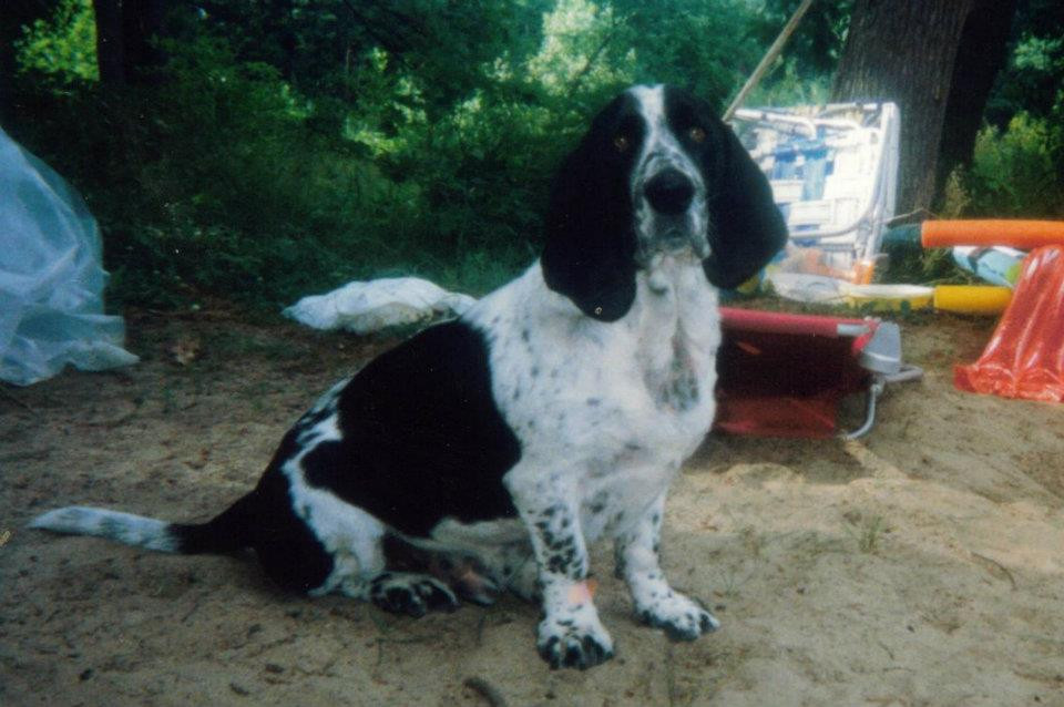 Rexford P. Hounddog
