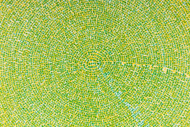 Anne (detail) coloured pen on paper (2014)